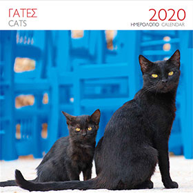 Greek Cats, 2020 Wall Calendar, 30 x 30cm,  In Greek and English